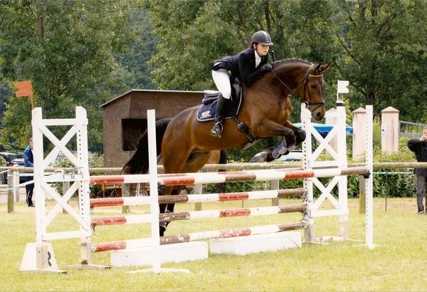 Les curies du plessis picard concours chevaux - Frison saut d obstacle ...